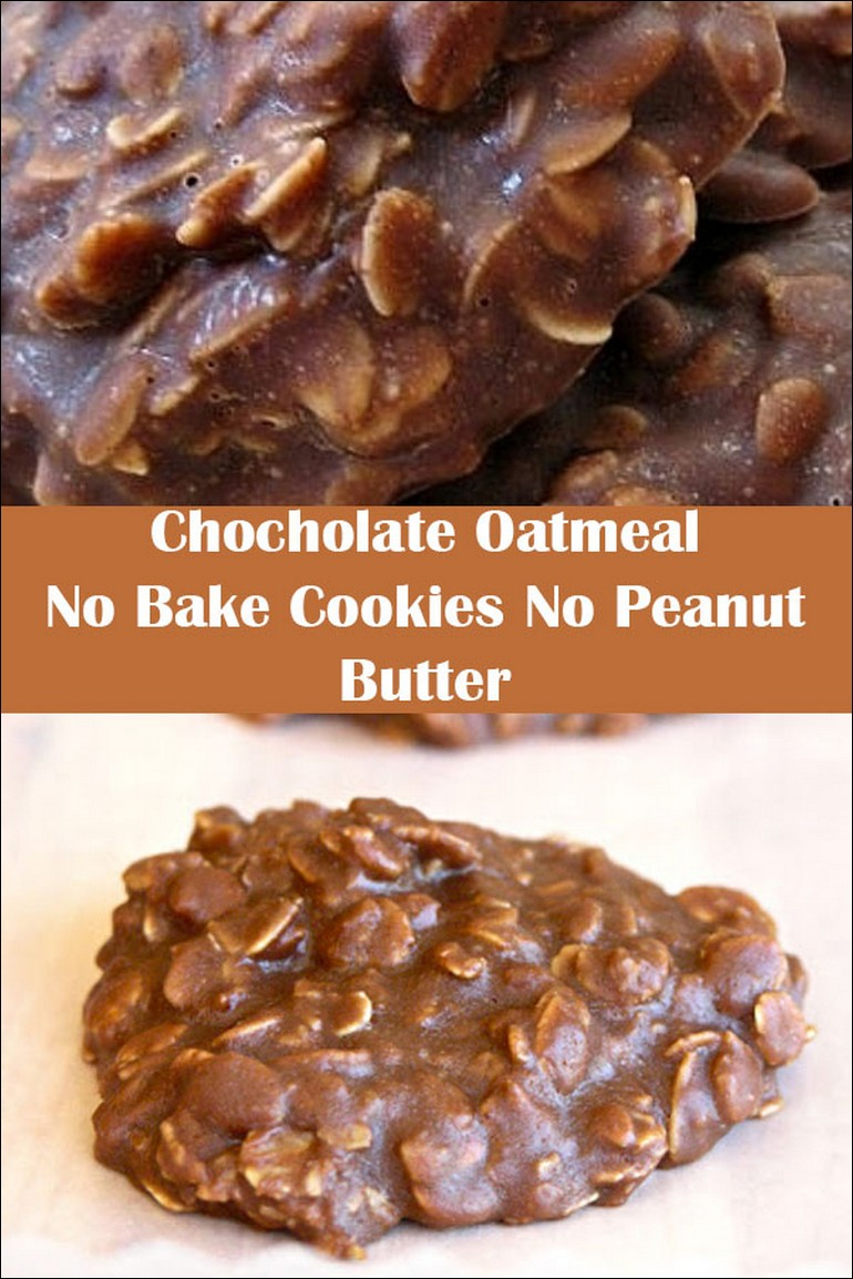 chocolate oatmeal no bake cookies no peanut butter